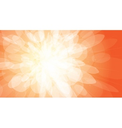 Orange light burst background vector