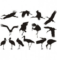 Stork silhouettes vector
