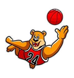 Basketball bear vector