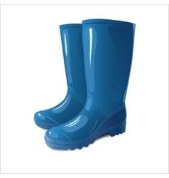 Blue rain boots vector