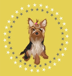 Little dog -desgn vector