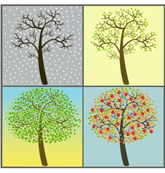 Trees collection - four seasons vector