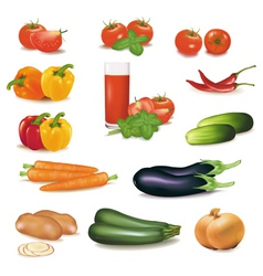 Big group of vegetables vector