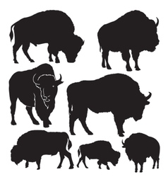 Silhouettes buffalo vector