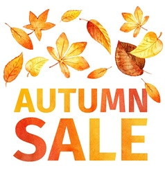 Autumn leaves autumn sale watercolor vector