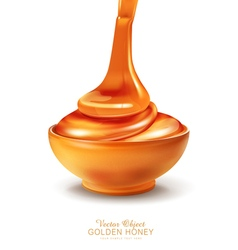 Object - a bowl is filled with honey vector