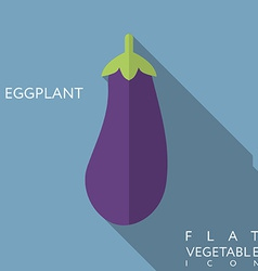 Eggplant flat icon with long shadow vector