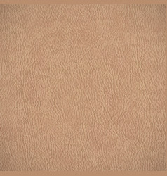 Leather texture horizontal background vector