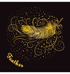 Decorative feather with curls on a dark background vector