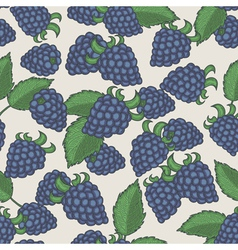 Doodle blackberries seamless pattern vector