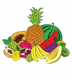 Fruits colored vector