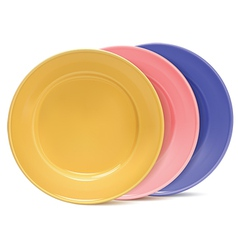 Clean plates vector