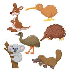 Australian animal cartoon vector