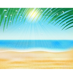 Summer sea beach with palm trees vector
