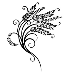 Grain corn vector