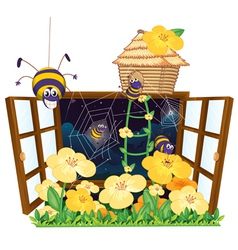 Spider bird house and window vector