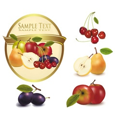 Gold label with sweet fruit vector