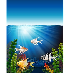 A group of fishes underwater vector
