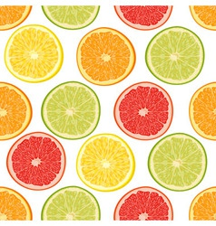 Fresh colorful citrus fruits seamless pattern vector