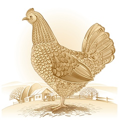 Graphical chicken vector