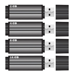 Flash drive size of vector