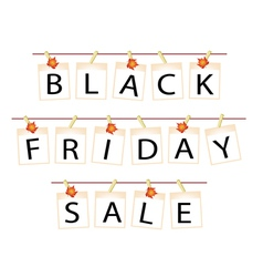 Black friday of blank photos with maple leaf vector