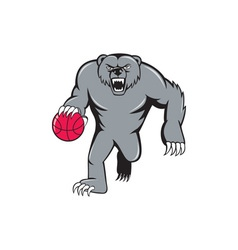 Grizzly bear angry dribbling basketball isolated vector