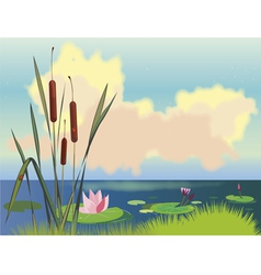 Lake cane and lotuses vector