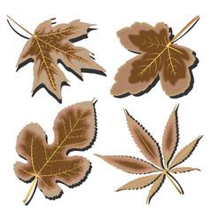 Dry leaves vector