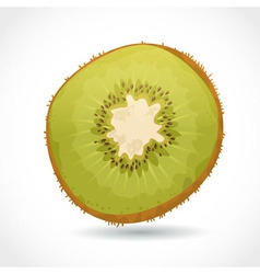 Fresh ripe piece of kiwi isolated on white vector