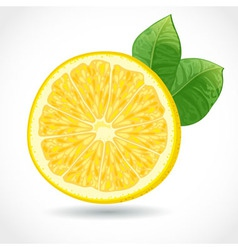 Fresh juicy piece of lemon isolated on white vector