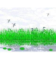 Marshland vector