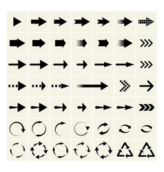 Universal arrows vector