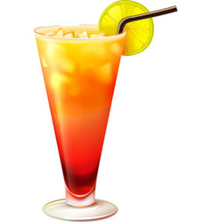 Tequila sunrise cocktail realistic vector