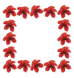 Red hibiscus frame vector