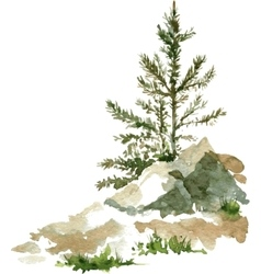 Pine trees and rocks vector