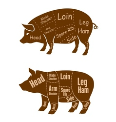 Meaty pigs with butchery cuts vector