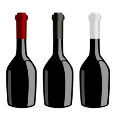 Three bottles of wine vector