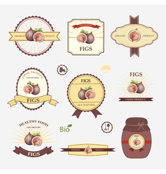 Figs set of label design vector