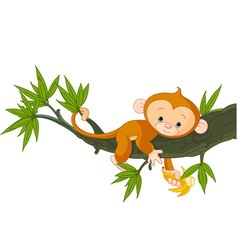 Cute baby monkey on a tree holding banana vector