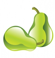 Pear illustration vector