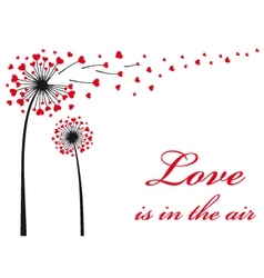 Dandelion with red hearts vector