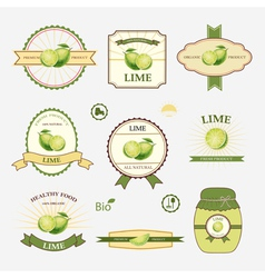 Lime set of label design vector