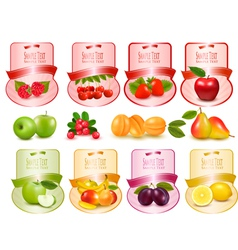 Labels with berries and fruit vector