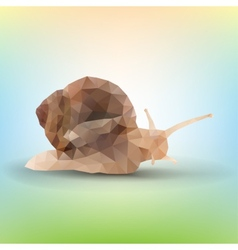 Triangle garden snail vector
