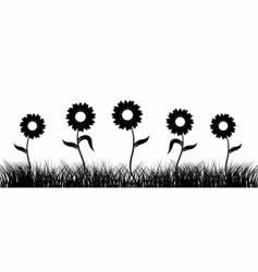 Sunflower on field black silhouette vector
