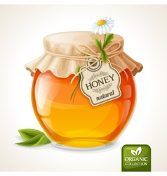 Honey jar glass vector