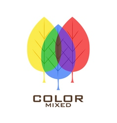 Primary color leaves logo design template vector