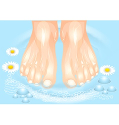 Foot care vector