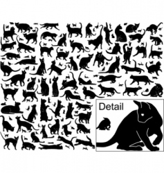 Cat outlines vector